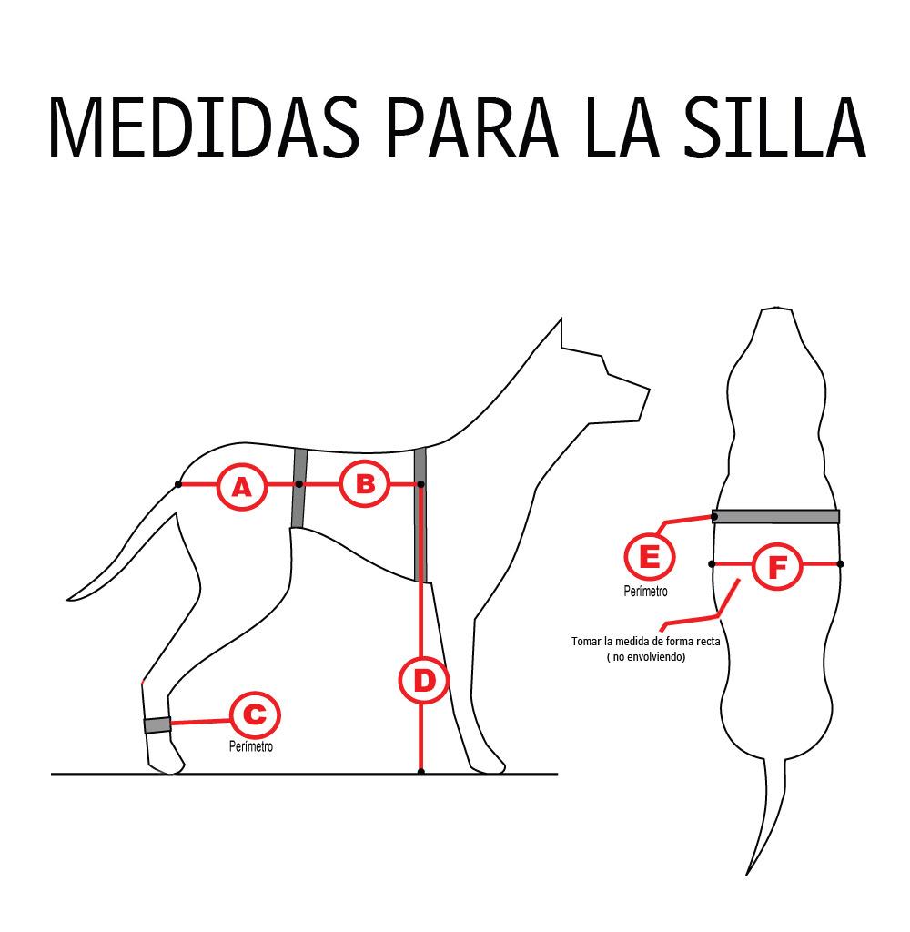 medidas-mascota